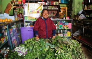 Cures with herbs in Quito