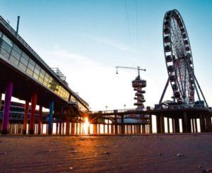 Dock of The Hague