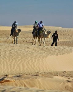 Dromedary ride in the dunes of Douz in Tunisia