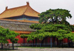 Imperial Garden of the Forbidden City of Beijing