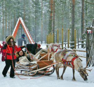 Reindeer sleigh tour in Santa Claus Village in Rovaniemi