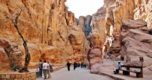Jordan – Siq, the great gorge towards the hidden city of Petra
